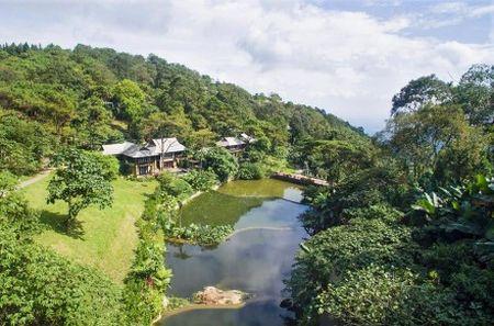 Ngang nhien xay resort khong phep giua vuon quoc gia - Anh 1