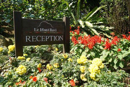 Resort Ba Vi: Giao 53ha dat lay 8 ty dong vi… ne nang - Anh 1