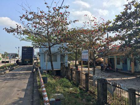 "Binh Dinh: Cong an tinh vao cuoc vu ""CSGT cho xe qua tai qua tram can"" - Anh 1"