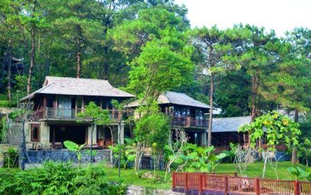 Resort trai phep tai Ba Vi: Tong cuc Lam nghiep biet nhung chua trinh phe duyet - Anh 1