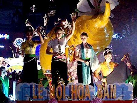 Dien Bien: To chuc Le hoi Hoa ban 2016 - Anh 1