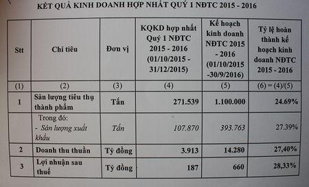 HSG xuat khau 20,000 tan ton thanh pham sang My - Anh 3