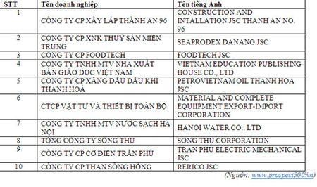 Cong bo 500 DN trien vong xuat sac nhat Viet Nam - Anh 1