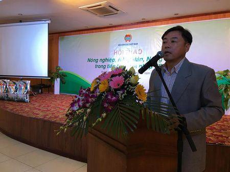 Phan bon Ba Con Rong dong hanh cung hoi nghi tam nong voi TTP tai Gia Lai - Anh 1