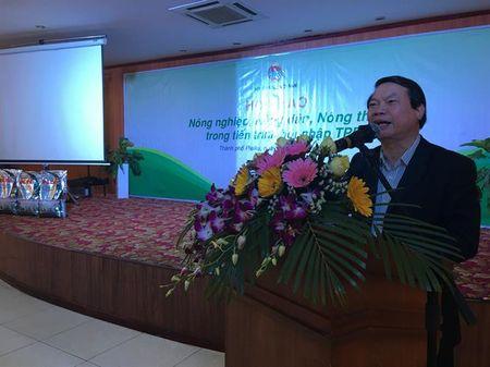 Phan bon Ba Con Rong dong hanh cung hoi nghi tam nong voi TTP tai Gia Lai - Anh 2