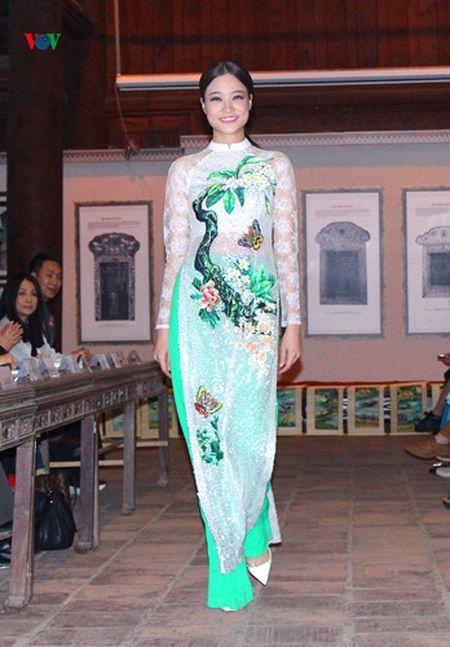 Le hoi Ao dai: Man trinh dien cua nhung nguoi mau dac biet - Anh 8