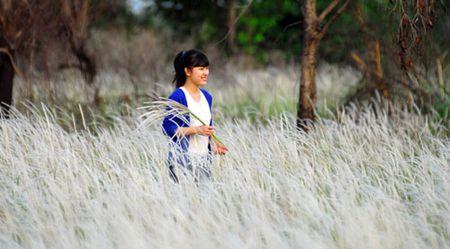 Canh dong co lau dep nhu tranh giua Sai Gon - Anh 13