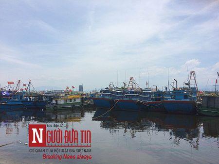 Ngu dan noi gi sau vu ca nuc nhiem doc Phenol o Quang Tri - Anh 1