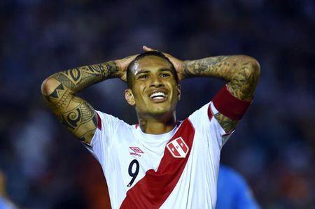 Brazil - Peru: Can tac vo uu - Anh 2