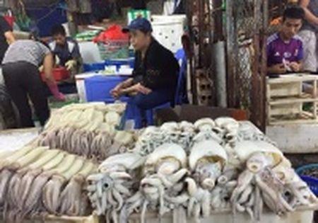 Cong bo hoa chat Phenol trong ca nuc o Quang Tri: Lieu co qua voi vang? - Anh 2