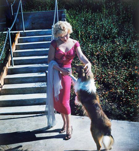 Nhung buc anh de doi cua 'bieu tuong sex' Marilyn Monroe - Anh 2
