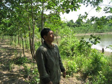 Binh Phuoc: Kiem lam Bu Dop chu dong phong chong chay rung trong mua kho - Anh 2