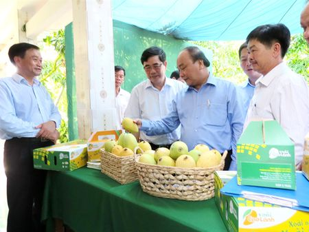 Thu tuong Chinh phu: Can hoc hoi Dong Thap ve tai co cau nong nghiep - Anh 1