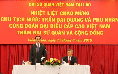 Chu tich nuoc tham can bo nhan vien Dai su quan Viet Nam tai Lao - Anh 1