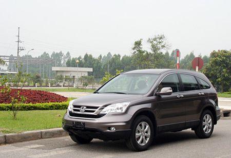 Hang nghin xe Honda CR-V dinh loi tai Viet Nam - Anh 1