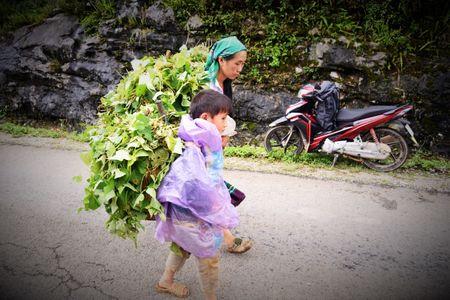 Cao nguyen da Dong Van hut hon trong mat du khach phuong Nam - Anh 18