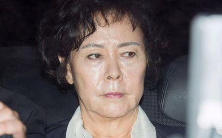 Chan dung nu dai gia cua Tap doan Lotte vua bi bat vi nghi tham nhung - Anh 9