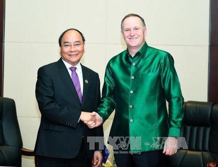 Thu tuong Nguyen Xuan Phuc hoi kien lanh dao Nhat Ban, New Zealand - Anh 2