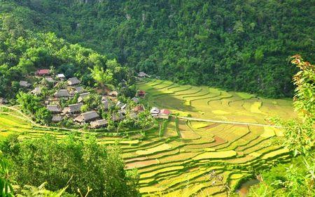 5 resort hang sang gan Ha Noi 'lam ban' voi nhung canh dong - Anh 2