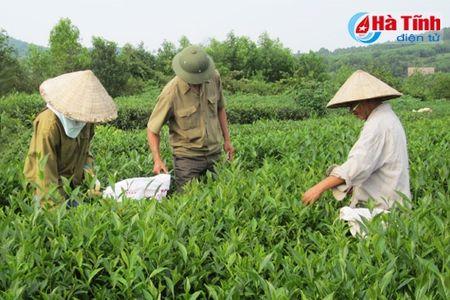 Xay dung ha tang - 'don bay' phat trien vung thuong Ky Anh - Anh 2