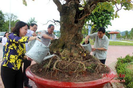 Bi thu Tinh uy An Giang dang huong tai Khu di tich Truong Bon - Anh 4