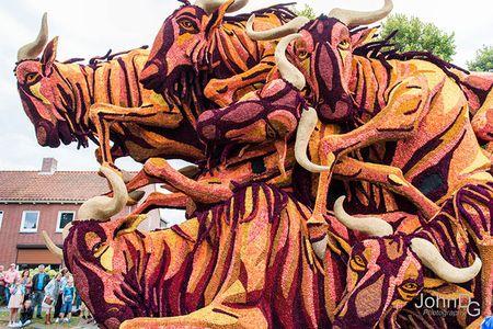 Chiem nguong nhung chiec xe hoa khong lo tren duong pho Ha Lan - Anh 13