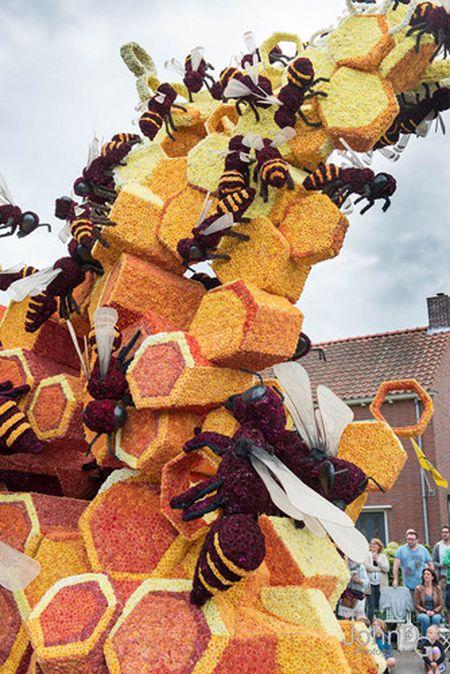Chiem nguong nhung chiec xe hoa khong lo tren duong pho Ha Lan - Anh 15