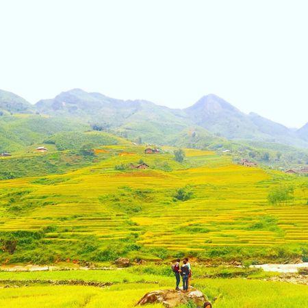 Hoa hau Viet Nam 2016 Do My Linh choang ngop truoc ve dep cua Sapa - Anh 9