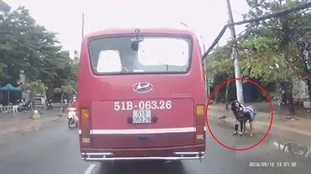 Clip: Nu sinh cap 2 bi ke bien thai sam so giua pho Sai Gon - Anh 2