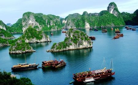 Viet Nam muon vinh Ha Long - Cat Ba la di san thien nhien the gioi - Anh 1