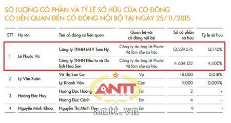 Ong Le Phuoc Vu dang co bao nhieu von tai Tap doan Hoa Sen? - Anh 1