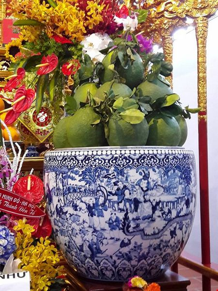 Chi tiet su ruc ro, dat tien khap noi o nha tho To cua Hoai Linh - Anh 19