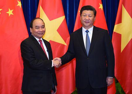 Thu tuong Nguyen Xuan Phuc hoi kien Chu tich Trung Quoc Tap Can Binh - Anh 2