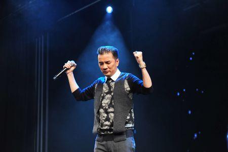 Dau tu 12 ty dong, Dam Vinh Hung se mang gi den 'Diamond show'? - Anh 12