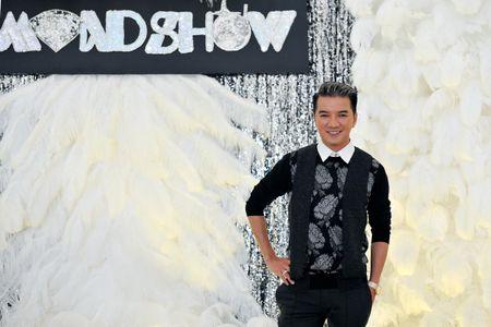 Dau tu 12 ty dong, Dam Vinh Hung se mang gi den 'Diamond show'? - Anh 2