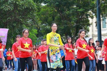 Hoa hau, A hau nhay flashmob o Ho Guom - Anh 5