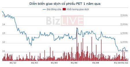 PET: Loi nhuan quy III thap nhat 2,5 nam - Anh 1