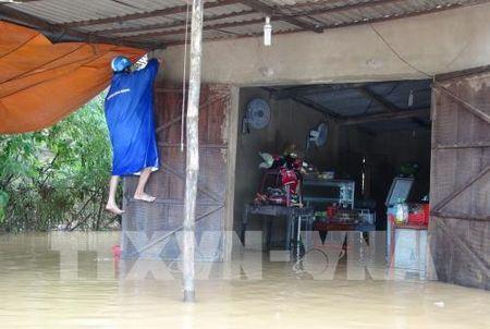 Quang Binh: Mua to, hang tram nha dan ngap trong nuoc - Anh 2