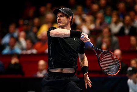 Vo dich Vienna Open, Andy Murray tien gan hon den ngoi so 1 the gioi - Anh 1