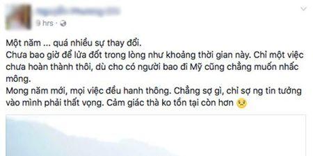 Cong dong mang no nuc 'Chuc mung nam moi 2017' - Anh 7
