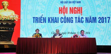 Hoi Luat gia Viet Nam trien khai cong tac trong tam nam 2017 - Anh 3