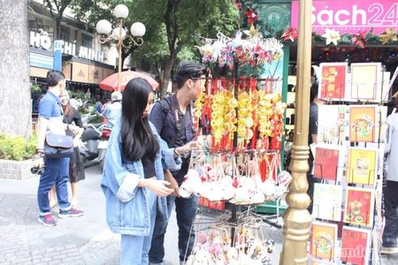 Pho Sai Gon nhon nhip, ngap sac xuan trong ngay nghi Tet duong lich 2017 - Anh 11