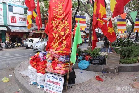 Pho Sai Gon nhon nhip, ngap sac xuan trong ngay nghi Tet duong lich 2017 - Anh 2