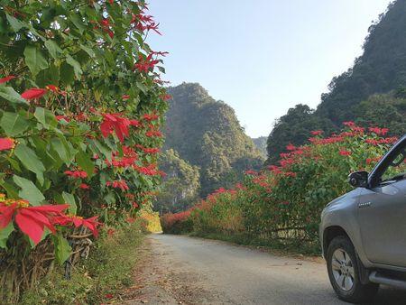 Ngang qua Ha Lang - Anh 1