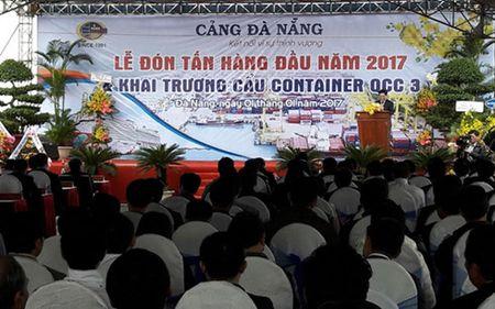 Da Nang: Don tan hang dau tien qua cang trong nam moi 2017 - Anh 1