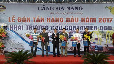 Da Nang: Don tan hang dau tien qua cang trong nam moi 2017 - Anh 3