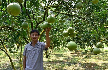 Buoi Phuc Ninh tu an choi den... lam that - Anh 2