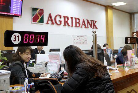 Agribank: Tao nen tang vung chac cho giai doan phat trien moi - Anh 2