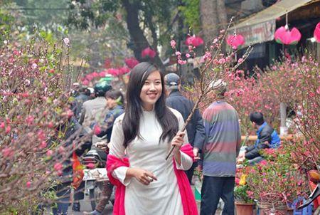 Thoi tiet 3 mien Tet Dinh Dau: Nang Xuan am ap - Anh 1