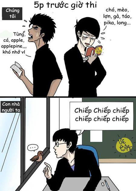 Cuoi te ghe 19/1: Soai ca phien ban chuan va phien ban loi - Anh 7